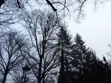 Grau ist es und diesig: Winter in Berlin!