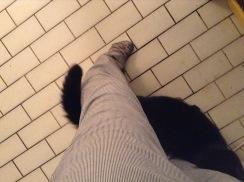 ...in meinen Beinen!