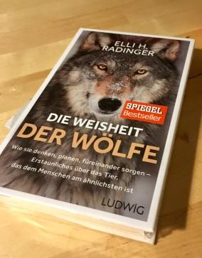 "23. Januar ""Neues Buch: Ich freu mich schon so aufs Lesen!"""