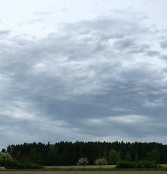 "28. April ""Heute 21 km durch brandenburg dem Molch folgend gewandert!"""