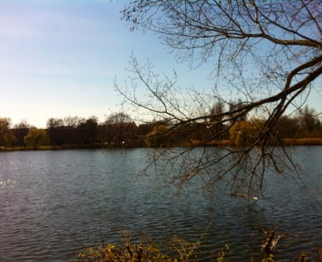 Am Schäfersee