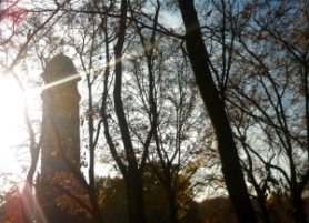 Jungfernheide Wasserturm